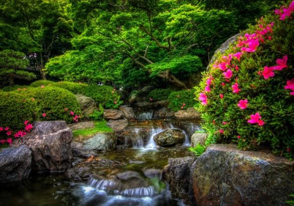 japaese garden