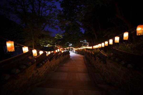 Lantern-lit walkway is a beautiful thing