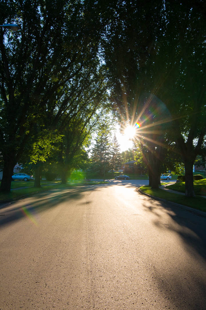 A morning walk in Brandon, MB