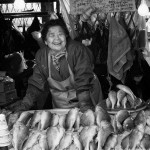 An elderly lady selling fish in Jagalchi Busan