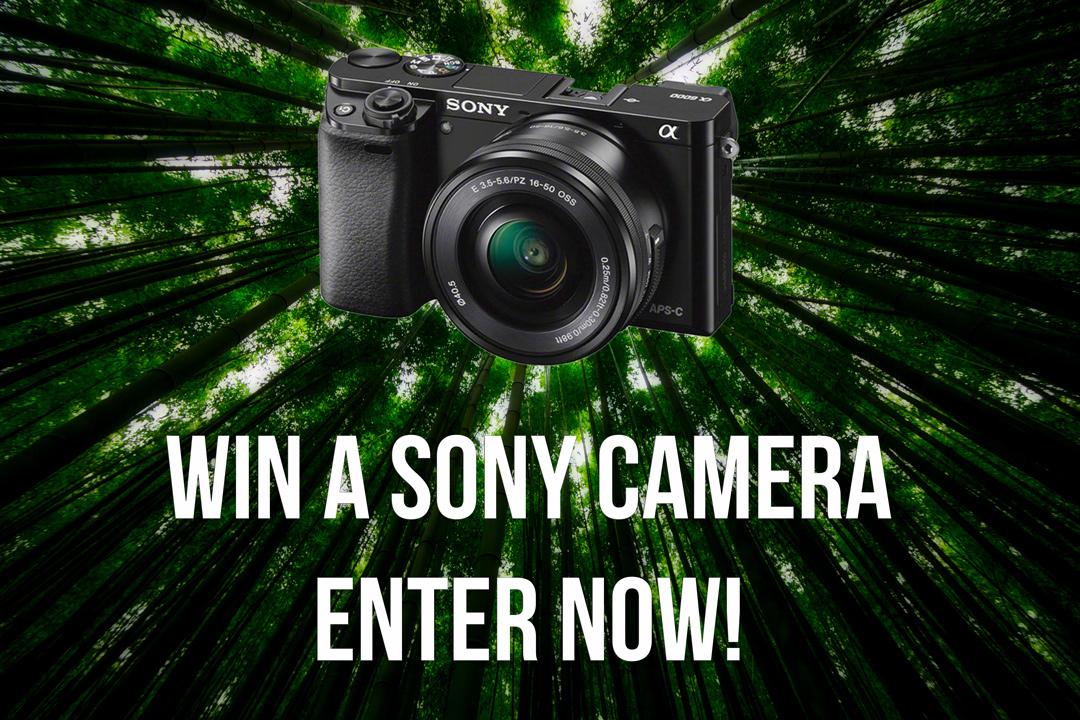Camera Give Away